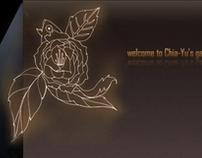 2010website