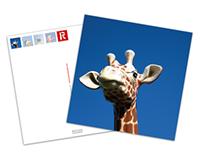 4by6.com Postcard Packs