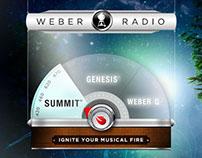 Weber Pandora Stations