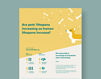 Human and Pet Lifespans Information Design