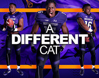 NFL Network: Back 2 Campus: A Different Cat