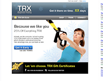 TRX integrated holiday email and banner ads campaign