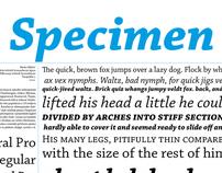 Chaparral Pro Specimen