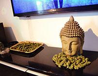 420 - High (Video)
