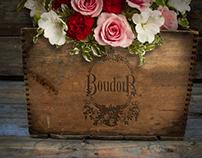 Boudoir: Logo and peripherals