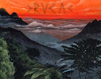 RVCA Summer 2013