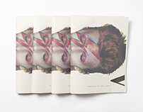 Journal Voir