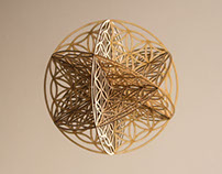 geometry: flower of life 3D - wood