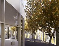 Biblioteca - Proyecto tectónica