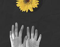Collage - BANDITØ