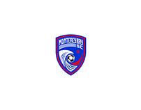 Monterey Bay Soccer Club Branding Design (Client Work)