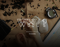 """TV channel """"DIWHY?"""" 