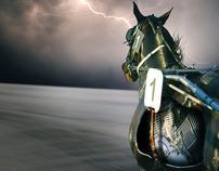 Horse Power Concept