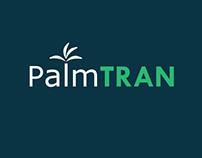 Palm Tran Branding Proposal