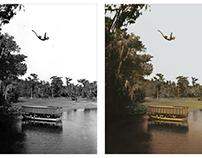 Recolored Vintage Photos