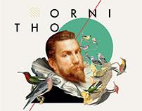 Ornithology - Collage Digital