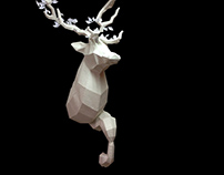 Stag 3D Project