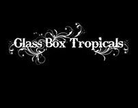 Glass Box Tropicals