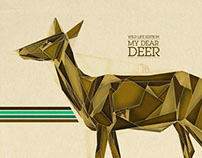 Wild Life Edition Illustrations