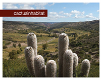 Web Design for a research project - cactusinhabitat