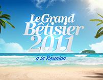 LE GRAND BETISIER 2011
