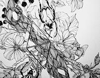 Summer sketch