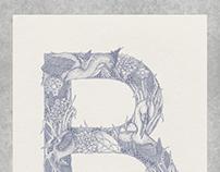 B Typography