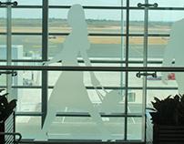 Hyderabad Airport, Environmental Graphics