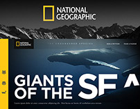 National Geographic - The Endangered Species (Concept)