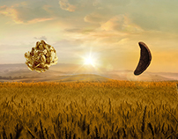 Nestle Granola | Cereals