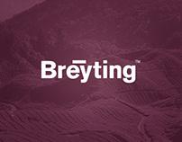Breyting Website Concept
