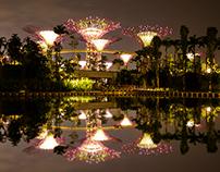 Landscape of Singapore