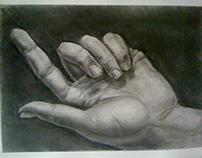 Dibujos anatómicos