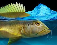 Pesca Esportiva no Tocantins