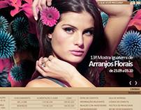 Iguatemi's website