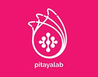 Branding PitayaLab