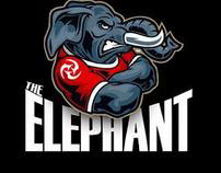Veselin Bozhinov  - The Elephant: MMA Fighter