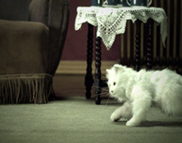 Yorn - Evil Cat