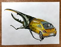 Metamorfosis - Ilustración