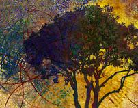 Tangle Trees