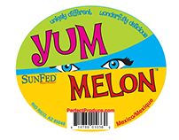 Yum Melon Project