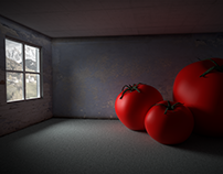 Tomato Family - Move in day picture