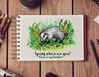 Spring Badger
