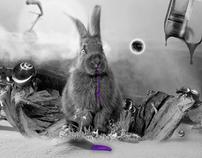 Rabbit on drugs