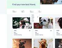 Pawsitive Tails —Dog Adoption Website