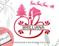 Brilliana Monogram Decorative Font