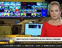 Propozycja grafiki ekranowej dla TVN24 Biznes i Świat