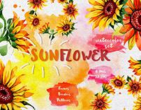 Sunflower PNG watercolor flower set