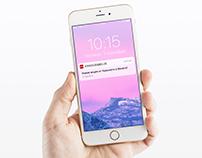 Large retail branch mobile app UX/UI