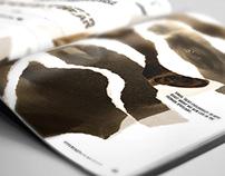 Magazine Redesign - Hypebeast